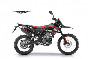 RX 125 EURO 4